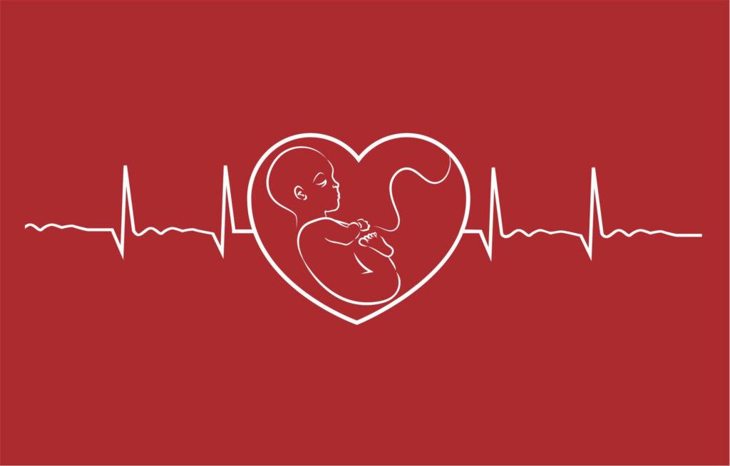 أعراض موت الجنين في الأشهر الأخيرة